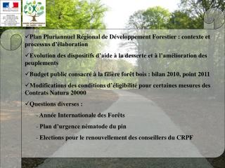 Plan Pluriannuel Régional de Développement Forestier : contexte et processus d'élaboration