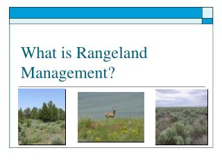 What is Rangeland Management?