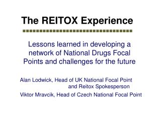 The REITOX Experience