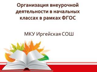 Организация внеурочной деятельности в начальных классах в рамках ФГОС
