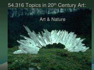 54.316 Topics in 20 th  Century Art:
