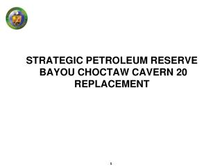 STRATEGIC PETROLEUM RESERVE  BAYOU CHOCTAW CAVERN 20 REPLACEMENT
