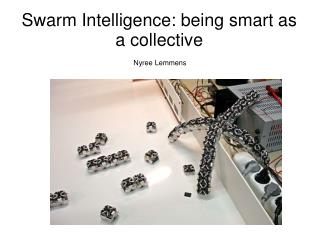 Swarm Intelligence: being smart as a collective