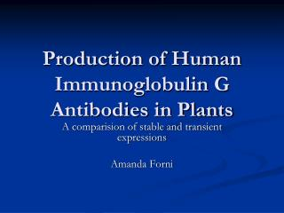 Production of Human Immunoglobulin G Antibodies in Plants