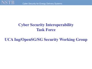 Cyber Security Interoperability  Task Force UCA Iug/OpenSG/SG Security Working Group