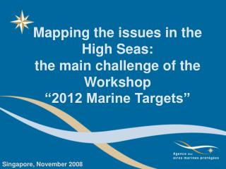 Mapping the issues in the High Seas:  the main challenge of the Workshop  �2012 Marine Targets�