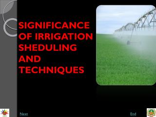 SIGNIFICANCE OF IRRIGATION SHEDULING AND TECHNIQUES
