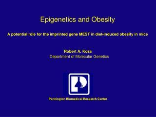 Epigenetics and Obesity