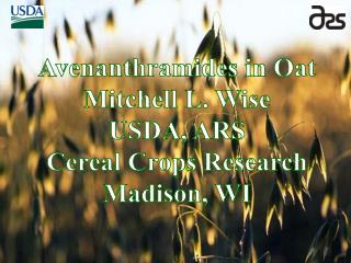 Avenanthramides in Oat Mitchell L. Wise USDA, ARS Cereal Crops Research Madison, WI