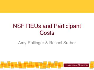 NSF REUs and Participant Costs