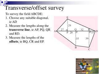 Transverse/offset survey