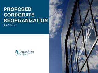 PROPOSED CORPORATE REORGANIZATION