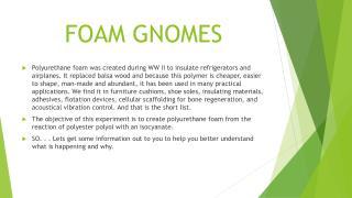 FOAM GNOMES