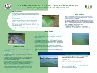 Freshwater Algae Blooms: Contributing Factors and Health Concerns Massachusetts Department of Public Health, Bureau of E