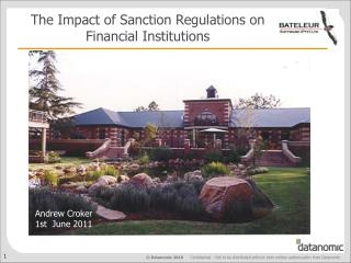 The Impact of Sanction Regulations on  Financial Institutions