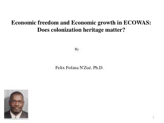 Economic freedom and Economic growth in ECOWAS: Does colonization heritage matter
