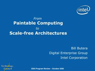 From  Paintable Computing to Scale-free Architectures