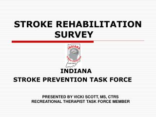 STROKE REHABILITATION SURVEY