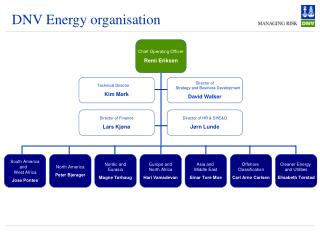 DNV Energy organisation