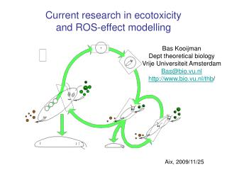 Current research in ecotoxicity  and ROS-effect modelling
