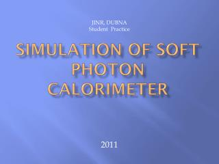 Simulation of soft photon calorimeter