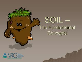 SOIL – The Fundamental Concepts