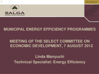 MUNICIPAL ENERGY EFFICIENCY PROGRAMMES
