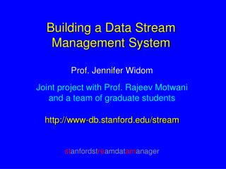 Building a Data Stream Management System