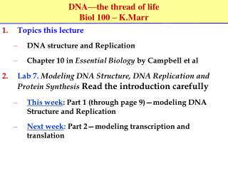 DNA�the thread of life Biol 100 � K.Marr