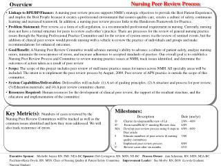 Nursing Peer Review Process