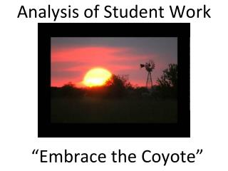 Analysis of Student Work