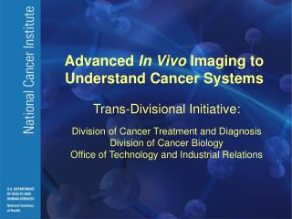 Advanced  In Vivo  Imaging to Understand Cancer Systems