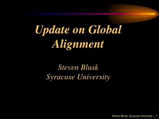 Update on Global Alignment Steven Blusk Syracuse University
