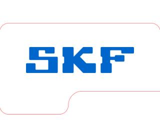The SKF Group Year-end result 2004 Tom Johnstone, President and CEO