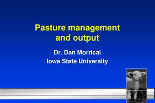 Pasture management  and output