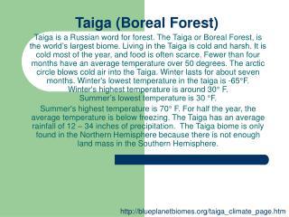 Taiga (Boreal Forest)