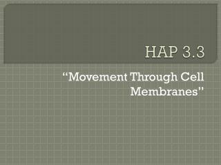 HAP 3.3