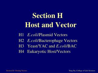 H1  E.coli /Plasmid Vectors