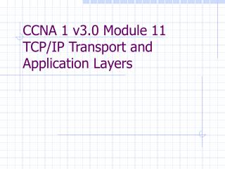 CCNA 1 v3.0 Module 11  TCP/IP Transport and Application Layers