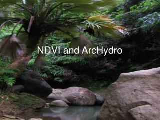 NDVI and ArcHydro