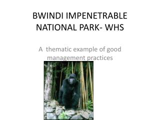 BWINDI IMPENETRABLE NATIONAL PARK- WHS