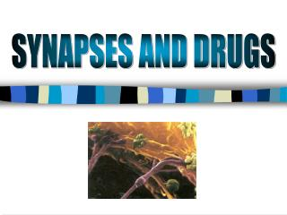 SYNAPSES AND DRUGS