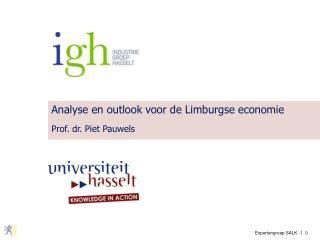 Analyse en outlook voor de Limburgse economie Prof. dr. Piet Pauwels
