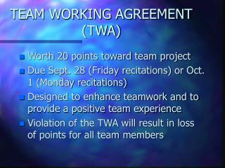 TEAM WORKING AGREEMENT (TWA)