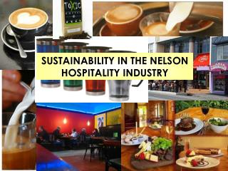 SUSTAINABILITY IN THE NELSON HOSPITALITY INDUSTRY