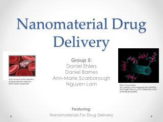 Nanomaterial Drug Delivery