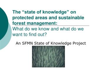 An SFMN State of Knowledge Project