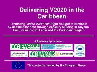 Delivering V2020 in the Caribbean