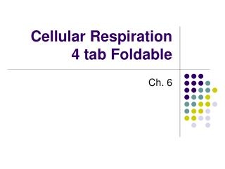 Cellular Respiration  4 tab Foldable