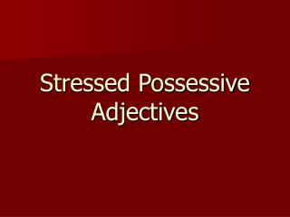 Stressed Possessive Adjectives